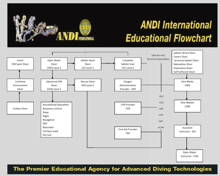 ANDI Recreational Flowchart