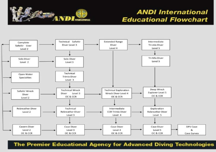 ANDI Technical Flowchart