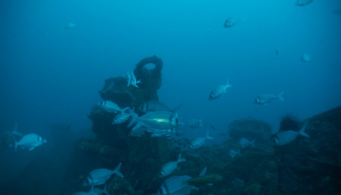 Foto del ancla de respeto en la cubierta del SMS Dresden hundido en bahia cumberland en Juan fernandez