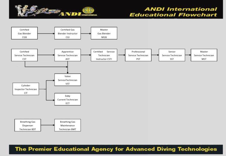ANDI Technician Flowchart
