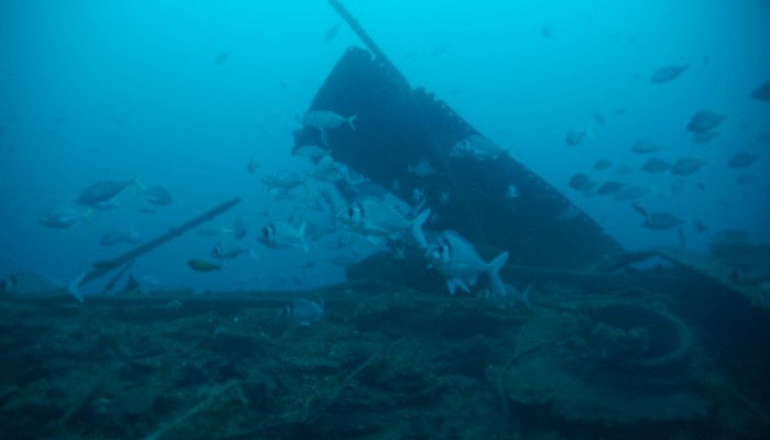 Imagen de restos sobre la cubierta del SMS Dresden hundido en bahia cumberland en juan fernandez